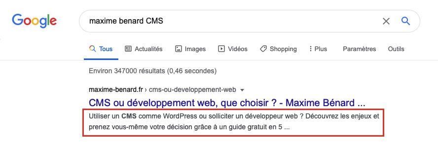 Exemple d'une balise metadescription sur GoogleSearch