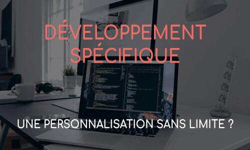 Personnalisation & développement de site spécifique